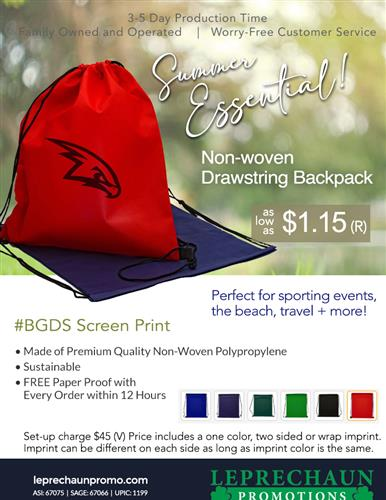 Budget Priced Bag for Beach, Travel and Summer Events